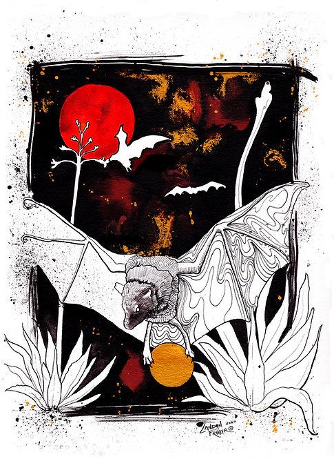 Long Nose Bat & Agave