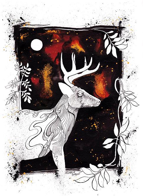 Deer & Elder