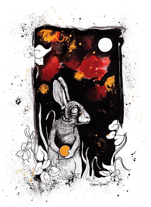 Rabbit & Wild Violets