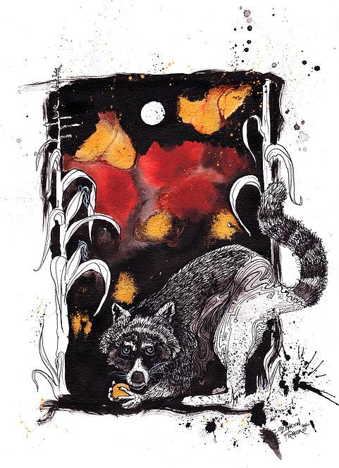 Raccoon & Corn