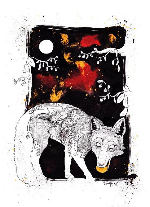 Fox & Persimmon