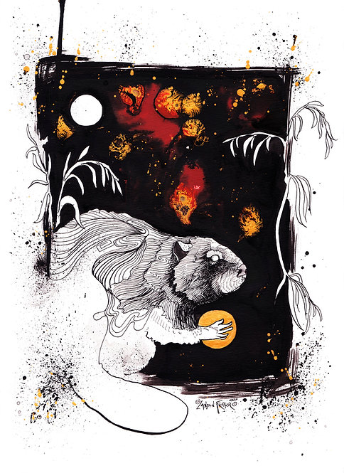 Beaver & Willow