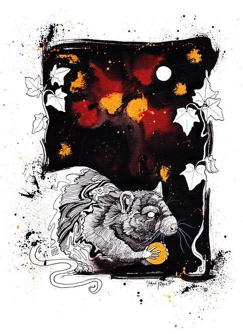 Rat & English Ivy
