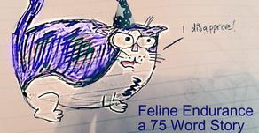 Feline Endurance
