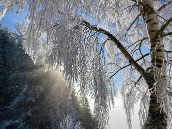 Eggberge Winter-Paradis