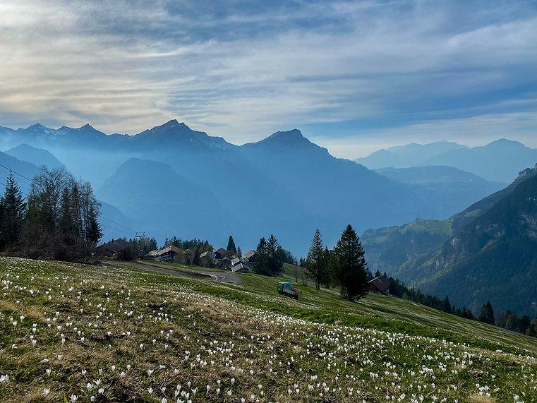 Eggberge Aussicht in Richtung Urnensee und Luzern