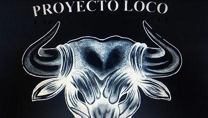 proyecto loco.jpg