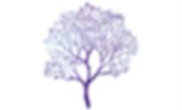 médium médiumnité soins guérison énergie transe reiki nyon