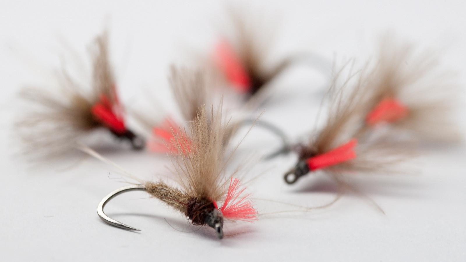Cours de montage de mouche artificielles avec Dipteria, guide de pêche à la mouche