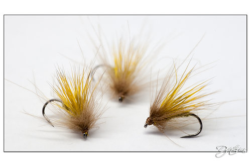 Sedge chevreuil CDC