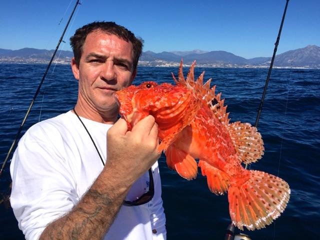 Catch caught in the Rodman 1250 / Captura pescada en el Rodman 1250