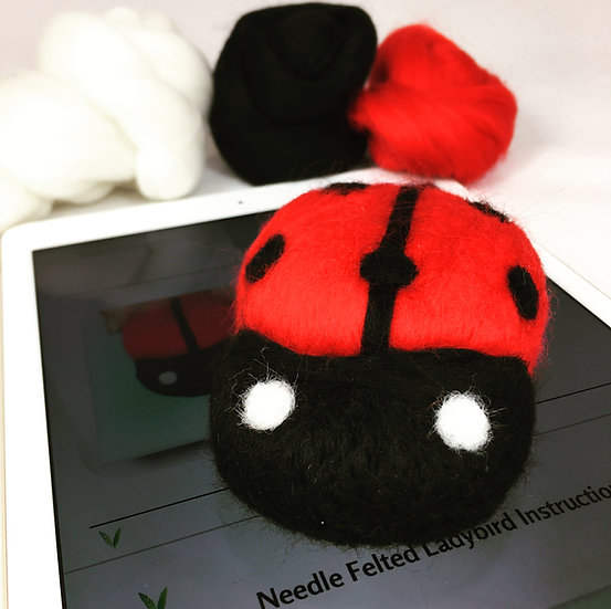 Ladybird PDF