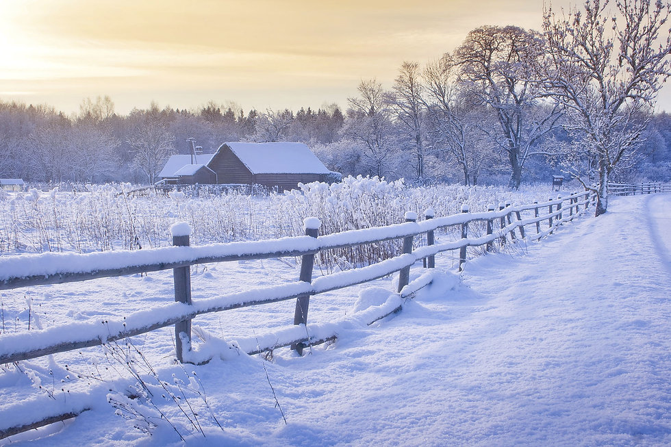 Yorkshire Christmas.jpg