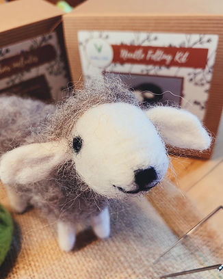 Grey Sheep 4.JPG