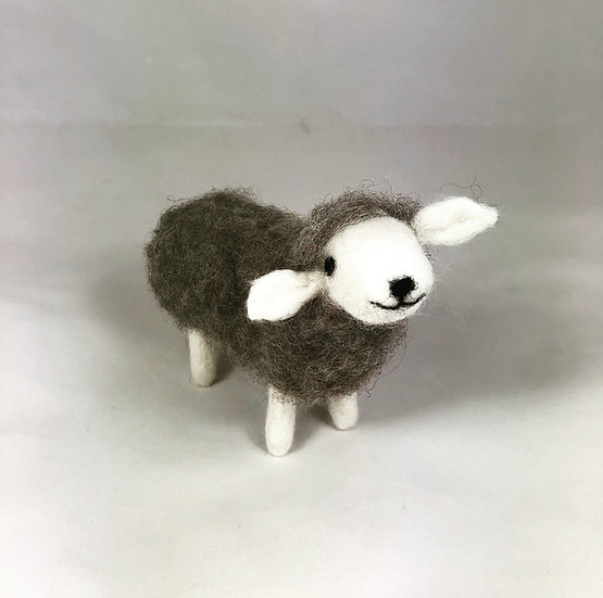 Grey Sheep