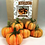Thumbnail: Collection Of Pumpkins