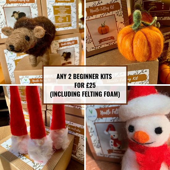 Any 2 x Beginner Kits