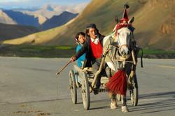 tibet-952688_1920