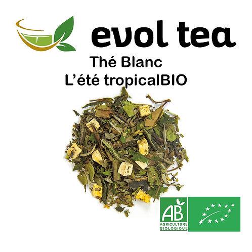 Thé Blanc L'été tropical BIO 100g