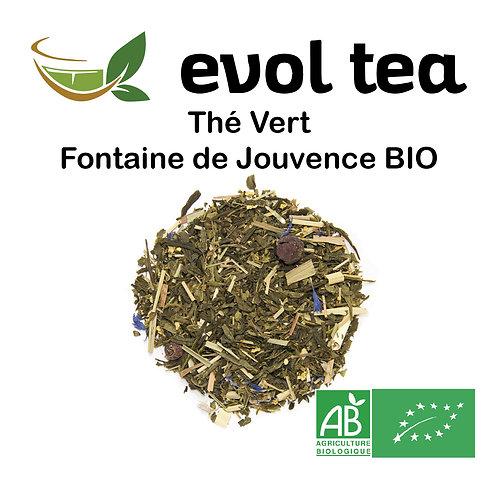 Thé Vert Fontaine de Jouvence BIO 100g