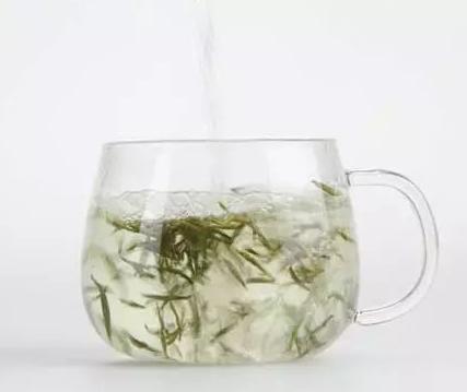 infusion thé blanc