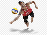 volleyball-png-5a35445fa34ea5.0798879015