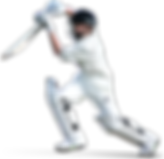 Cricket-Transparent-Images-PNG.png