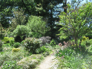 Bruce Reynolds Memorial Garden