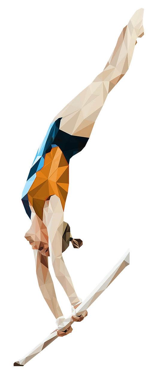 gymnast athlete yorkton physiotherapy webdesign by jesse ellert studios