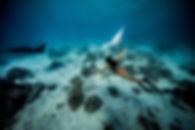 Swim with the Giant Manta Rays