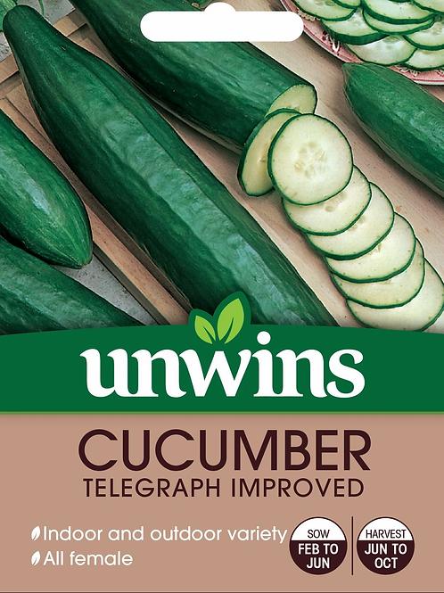 Cucumber Telegraph Improved (Unwins)