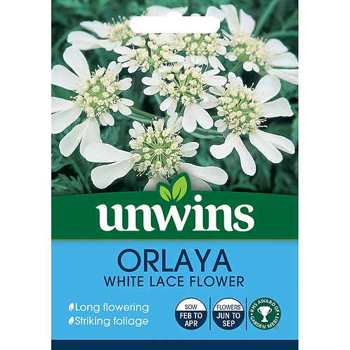 Unwins Orlaya White Lace Flower - Approx 25 Seeds