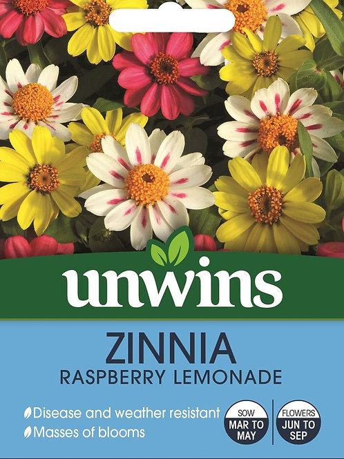 Unwins Zinnia Raspberry Lemonade - Approx 20 Seeds