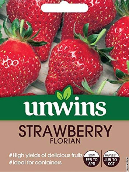 Strawberry Florian (Unwins)