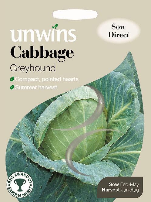 Unwins Cabbage Greyhound - Approx 350 Seeds