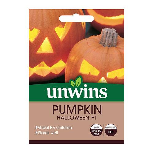 Pumpkin Halloween F1 (Unwins)