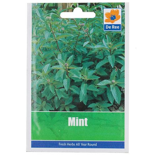 De Ree Mint Seeds