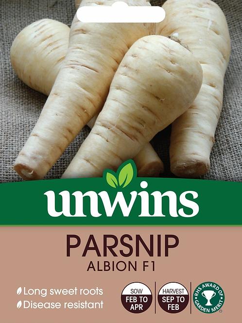 Unwins Parsnip Albion F1 - Approx 400 Seeds