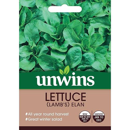 Lettuce (Lamb's) Elan (Unwins)