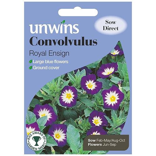 Unwins Convolvulus Royal Ensign - Approx 200 Seeds