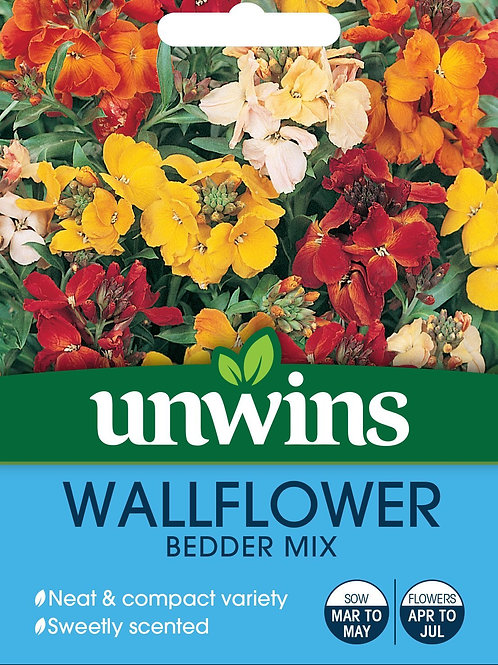 Unwins Wallflower Bedder Mix - Approx 600 Seeds