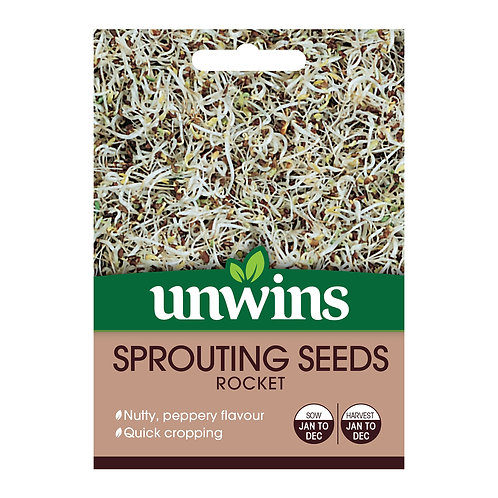 Sprouting Seeds Rocket (Unwins)