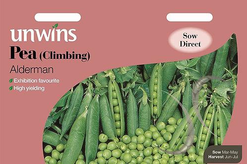 Unwins Pea (Climbing) Alderman - Approx 250 Seeds