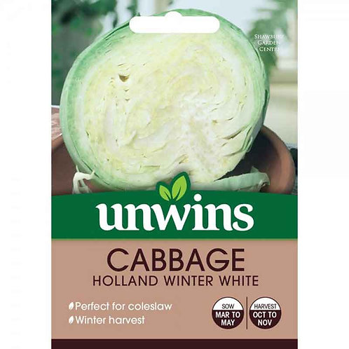 Unwins Cabbage Holland Winter White - Approx 200 Seeds