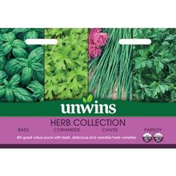 Unwins Herb Collection - 4 Varieties
