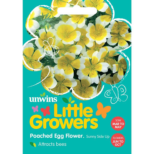 Unwins Little Growers Poached Egg Flower - Approx 120 Seeds