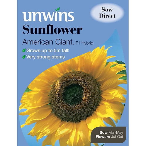 Unwins Sunflower American Giant F1 - Approx 12 Seeds
