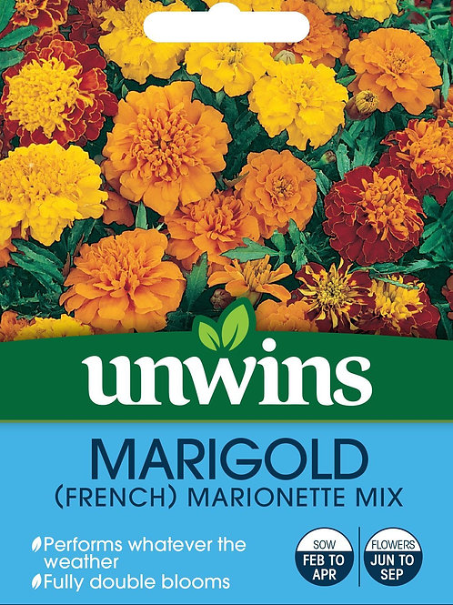Unwins Marigold (French) Marionette Mix - Approx 150 Seeds