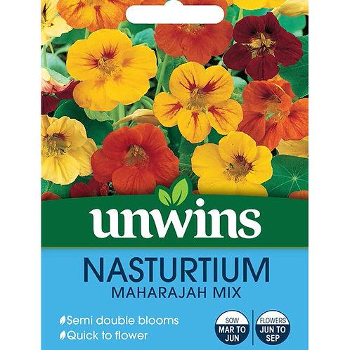 Unwins Nasturtium Maharajah Mix - Approx 35 Seeds