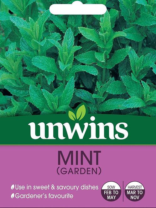 Unwins Mint (Garden) - Approx 750 Seeds